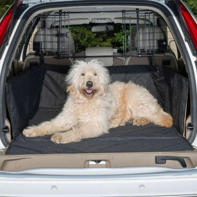 Boot Liner for Dogs