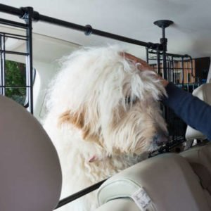 Dog Guard – Sliding Grille (Headrest Mounted)